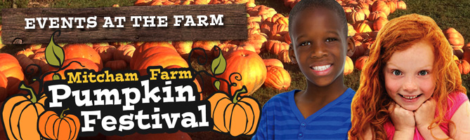 Pumpkin Festival Mitcham Farm - Oxford, Georgia